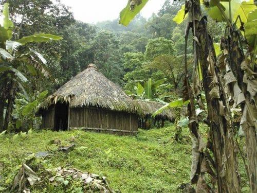 Rencontrer des communautés indigènes au Costa Rica