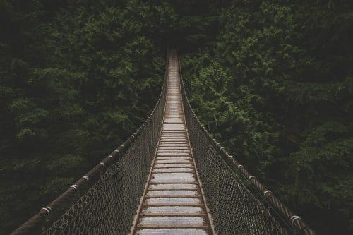 ponts suspendus