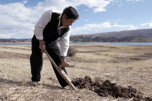 Projets Solidaires Autenteo Agricole