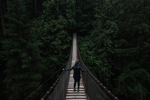 ponts suspendus amazonie