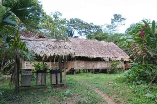 habitation bribri