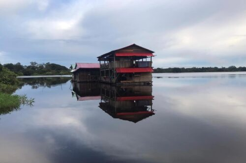 cabane amazonie