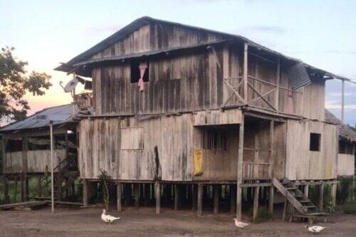 lodge Amazonie