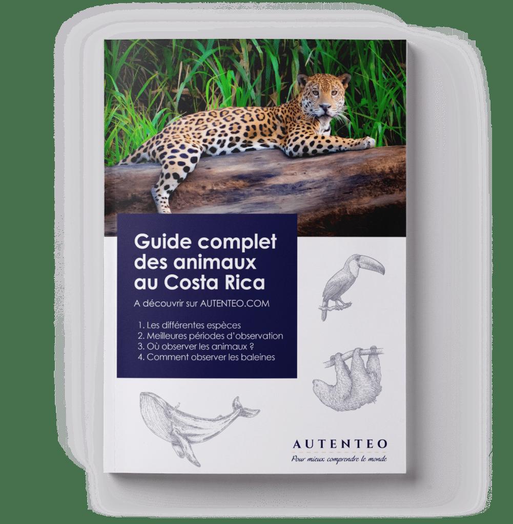 AUT_portadas-guias_libro_animales