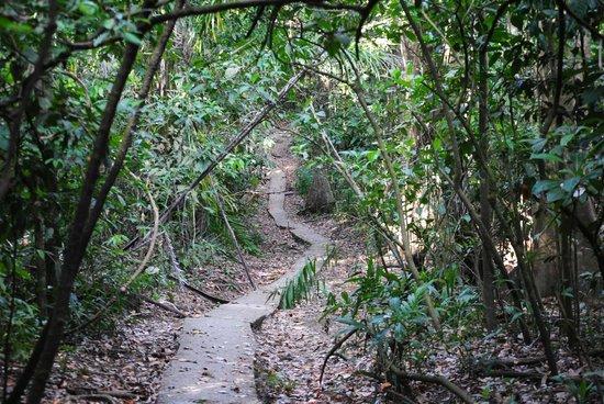 chemin Costa Rica
